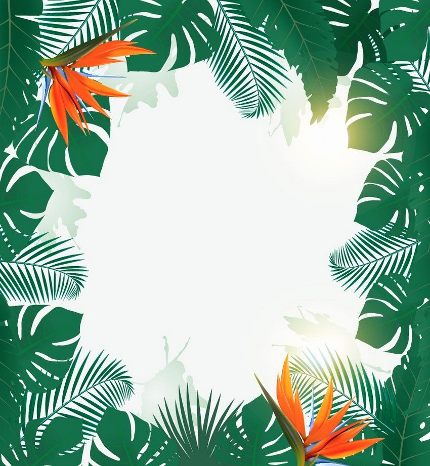 Party Backgrounds for Flyers New How to Make A Tropical Party Flyer Background In Adobe