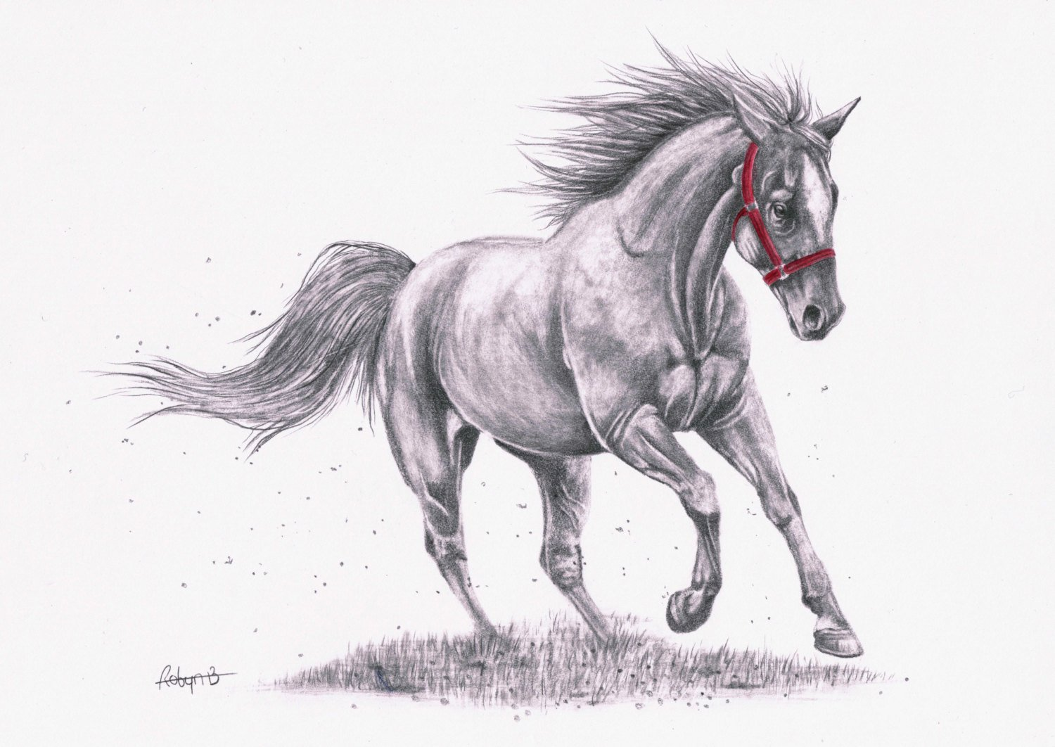 Pencil Sketches Of Horses Beautiful original Graphite Pencil Drawing Horse Horse Running Horse