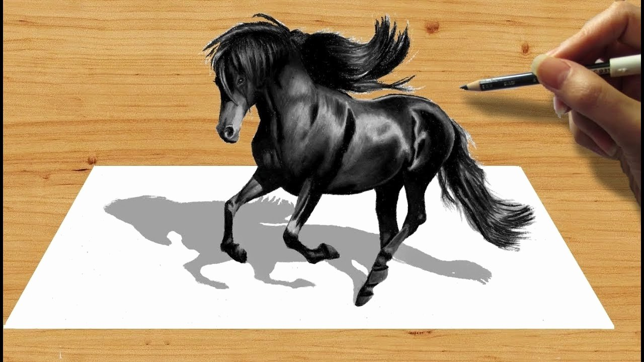 Pencil Sketches Of Horses Best Of 3d Pencil Drawing Black Friesian Horse Speed Draw