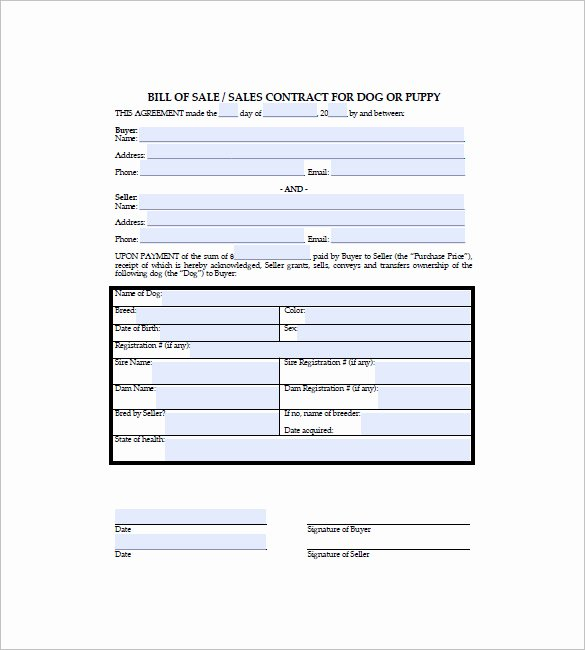 Pet Bill Of Sale Unique Dog Bill Of Sale – 8 Free Sample Example format