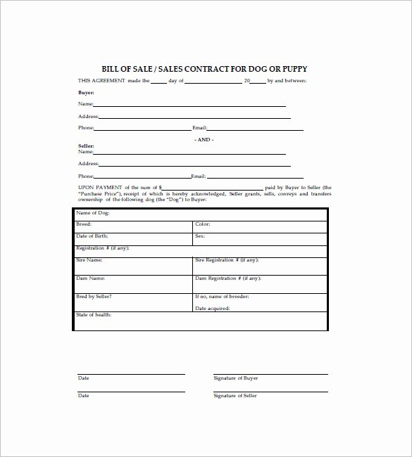 Pet Bill Of Sale Unique Dog Bill Of Sale Template – 13 Free Word Excel Pdf