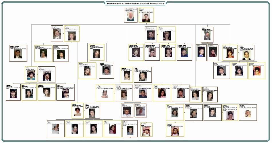 Photo Family Tree Maker New Family Tree Template Family Tree Maker Tlxgixtc