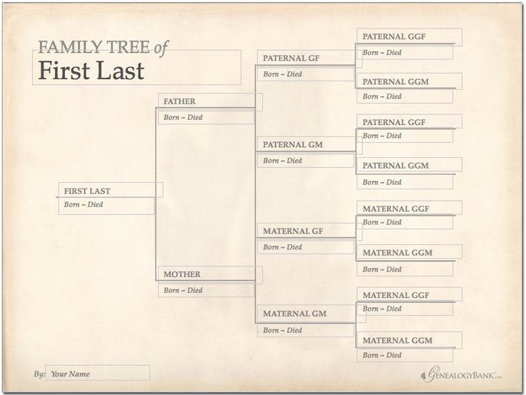 Picture Of Family Tree Chart Fresh 228 Best Images About Genealogy Charts forms and