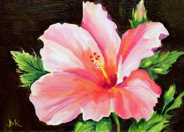 "Picture Of Flowers to Paint Inspirational ""hibiscus ""original Stillife Flowers Oil Painting New"