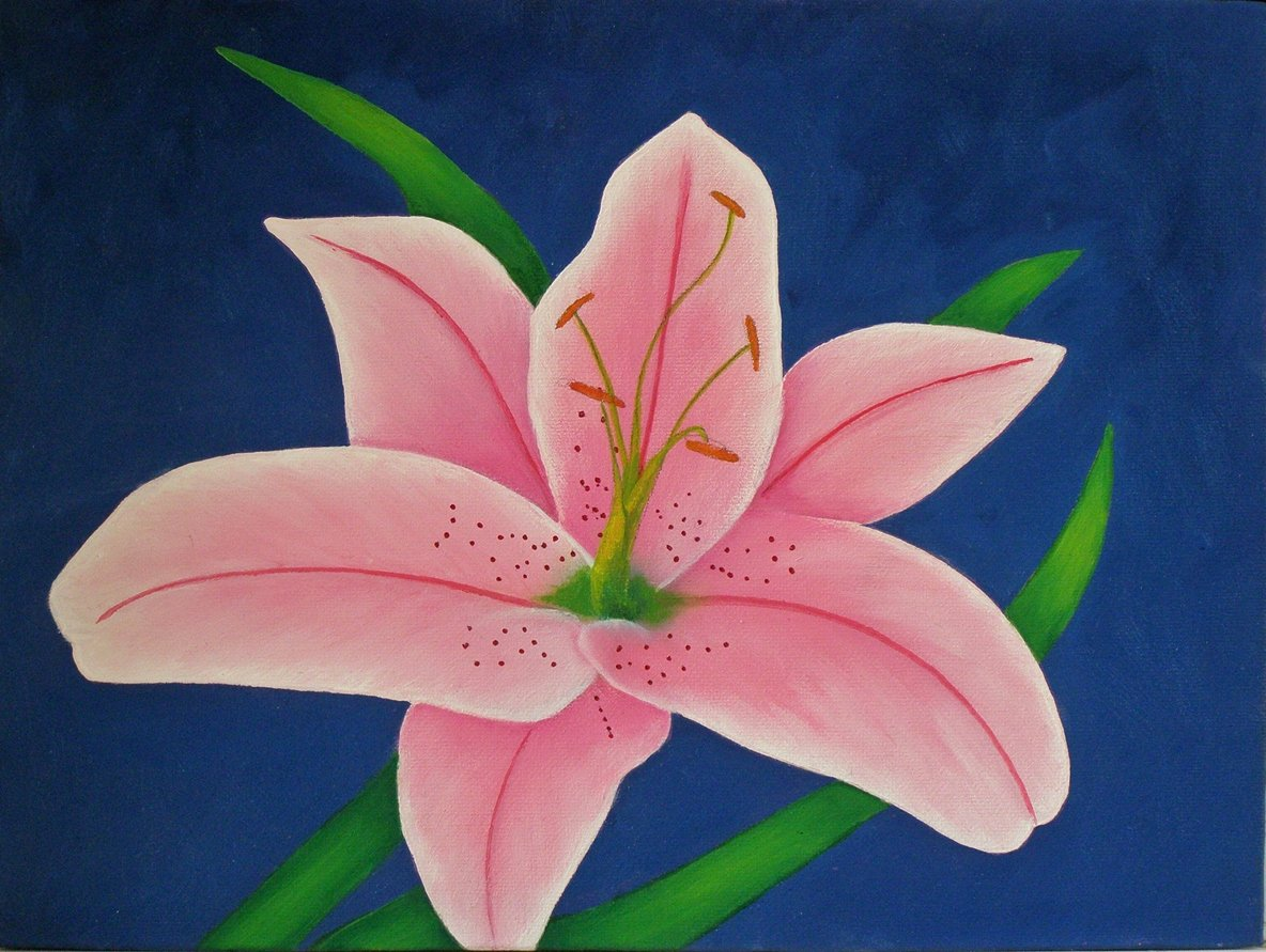 Picture Of Flowers to Paint Luxury Oil Painting Lessons Painting Demos Free Photos