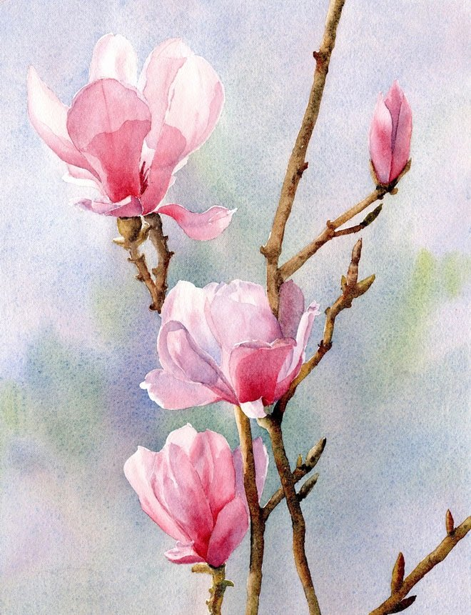 Picture Of Flowers to Paint New Famous Watercolor Flower Paintings – Weneedfun