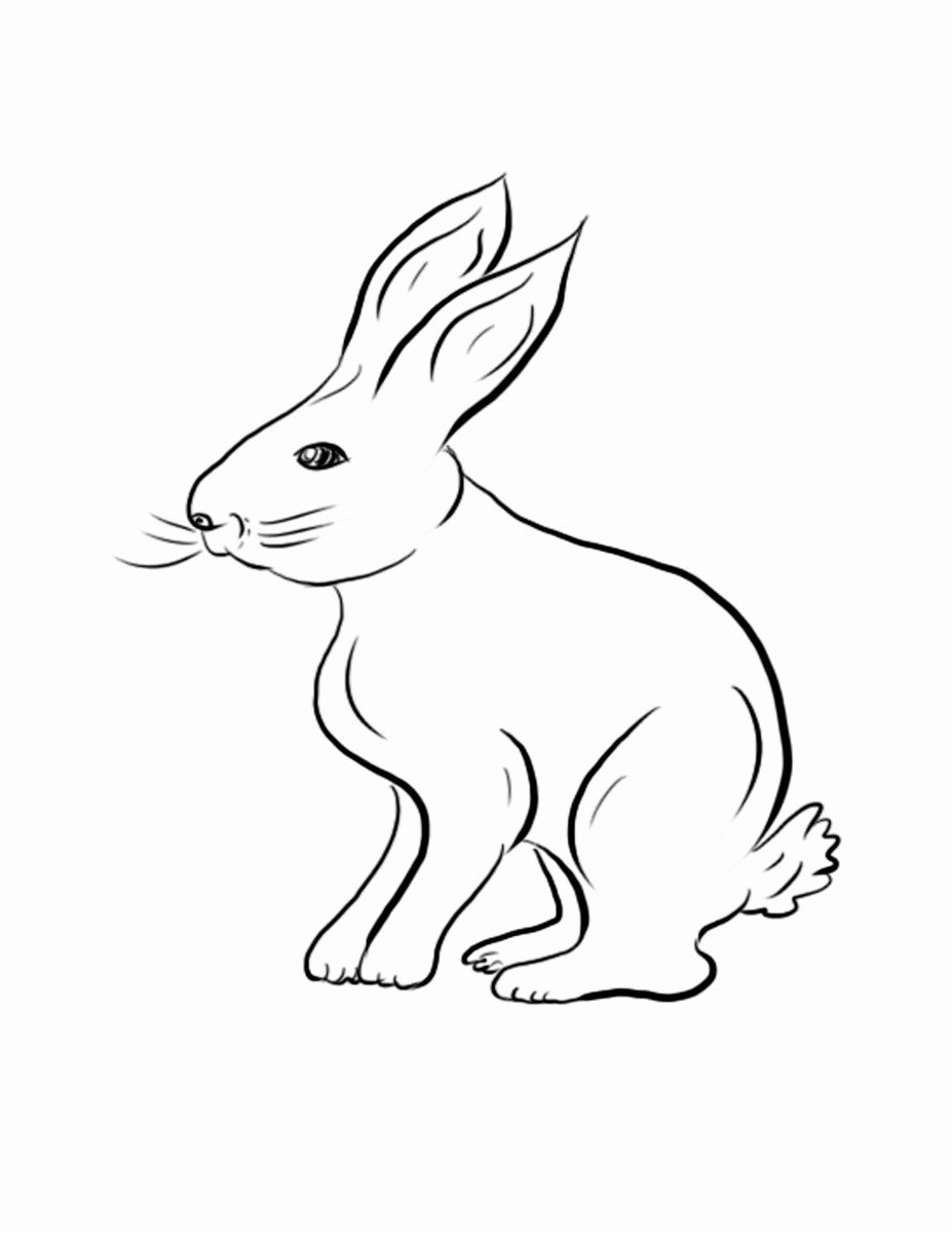 Pictures Of Bunnies to Print Awesome Free Printable Rabbit Coloring Pages for Kids
