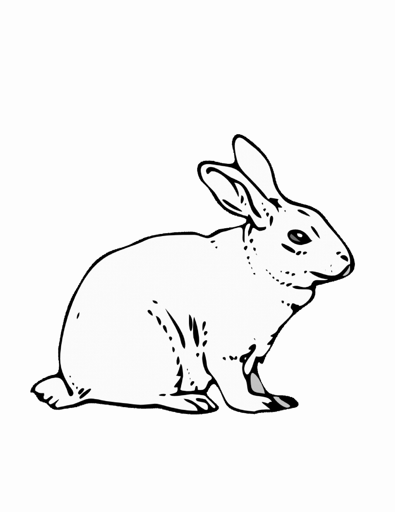 Pictures Of Bunnies to Print Lovely Coloring Pages A Rabbit Printable