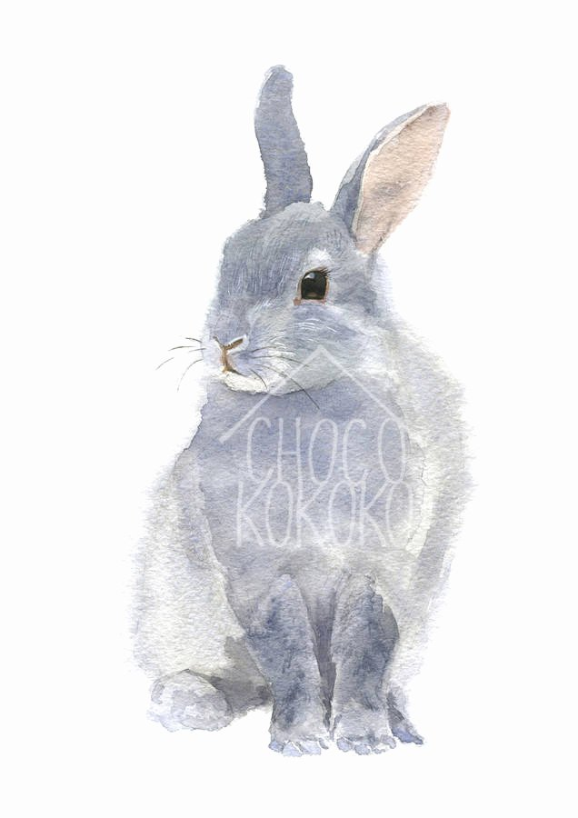 Pictures Of Bunnies to Print Unique Bunny Fine Art Print by Chocovenyl