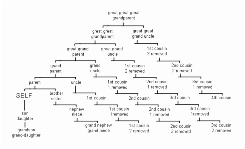 Pictures Of Family Trees Examples Awesome Family Tree Tips Begin at the Beginning