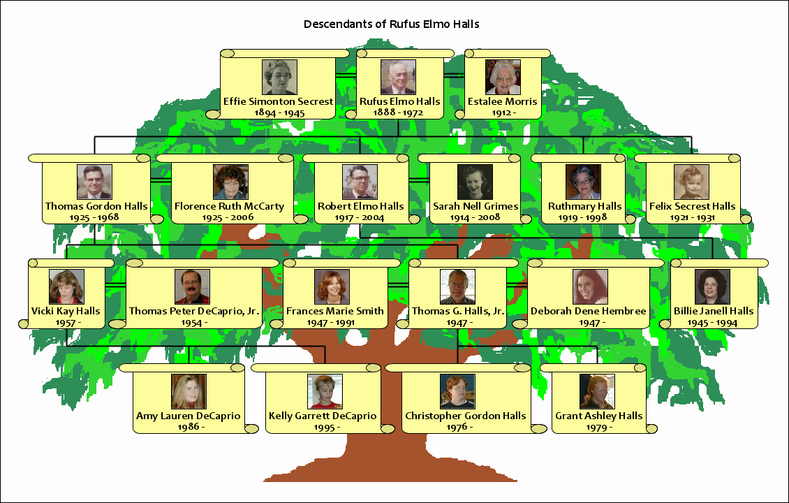 Pictures Of Family Trees Examples Awesome How to Make A Family Tree Using Your Own Family