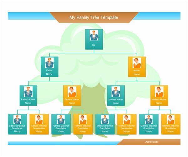 Pictures Of Family Trees Examples Lovely Family Tree Template – 17 Free Word Excel Pdf