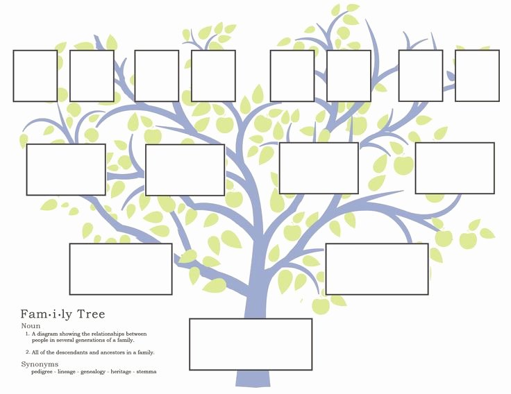 Print Family Tree Chart Fresh Family History Activities for Children 3 11