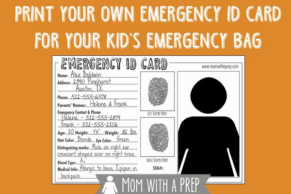 Print Id Cards Online Free Awesome Family Emergency Binder Free Checklist to Create Your Own