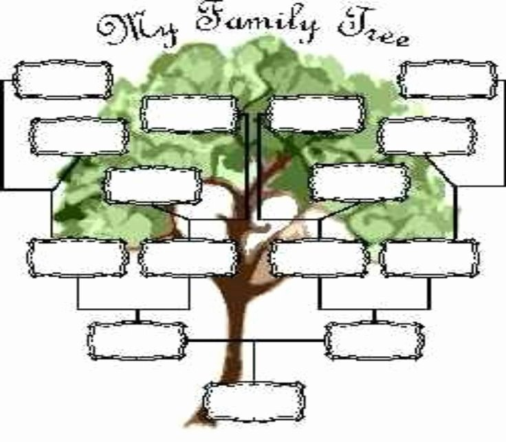 Printable Blank Family Tree Awesome Printable Blank Family Tree Family Tree