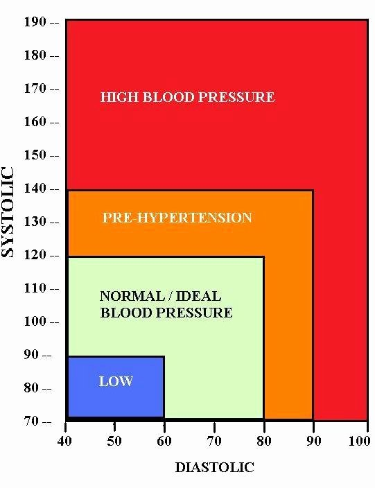 Printable Blood Pressure Range Chart Inspirational Blood Pressure Chart What is normal