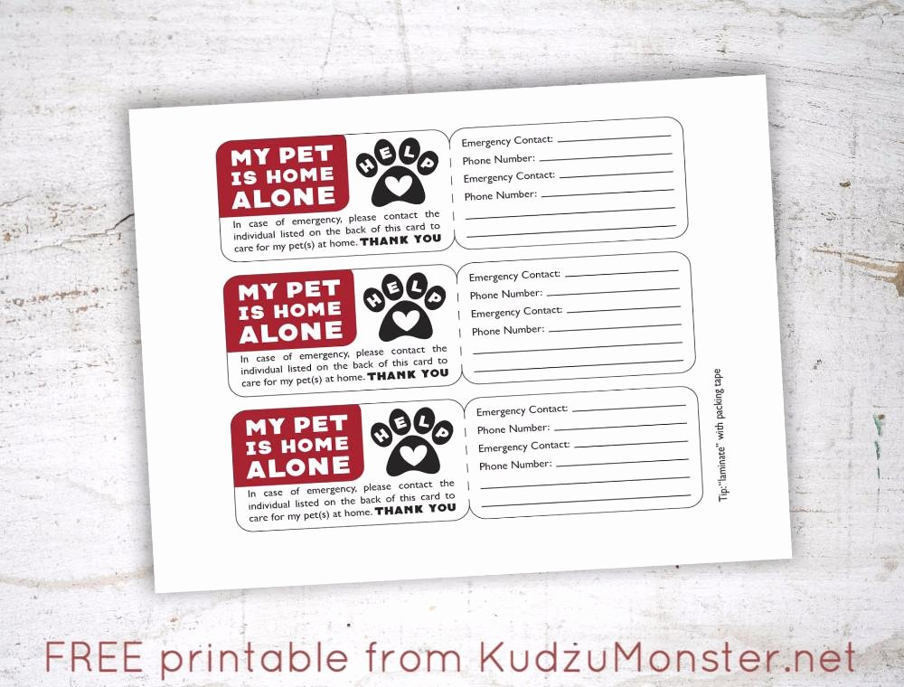 free printable pet emergency contact card