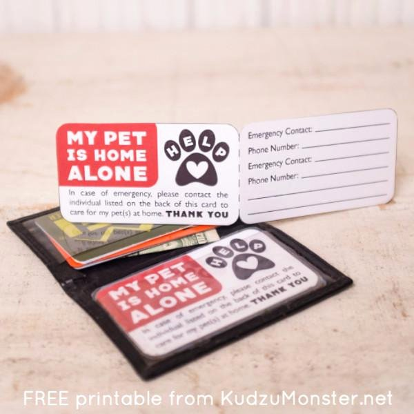Printable Emergency Contact Card Lovely Free Printable Pet Emergency Contact Card – Kudzu Monster