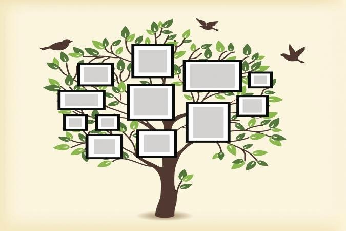 Printable Family Tree Charts Best Of Printable Family Tree Chart for Free