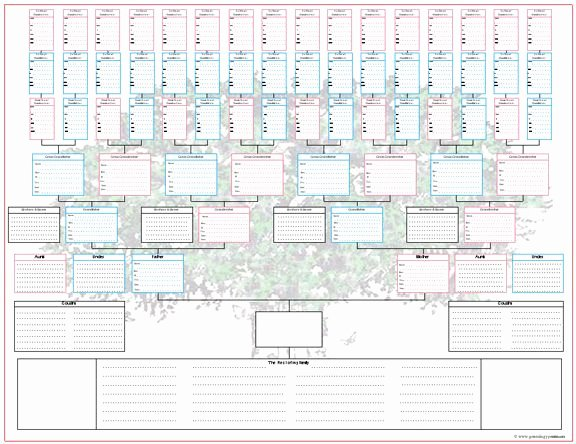 Printable Family Tree Charts Fresh 290 Best Genealogy Printables Images On Pinterest