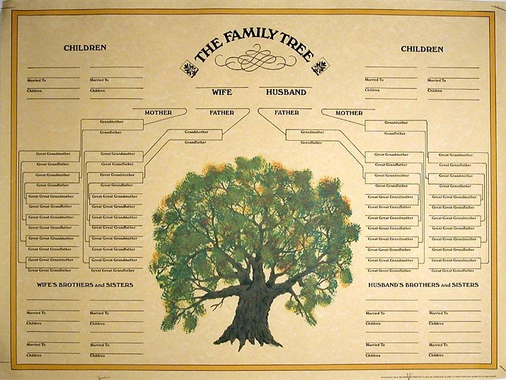 Printable Family Tree Charts New Family Tree Template Blank Family Tree