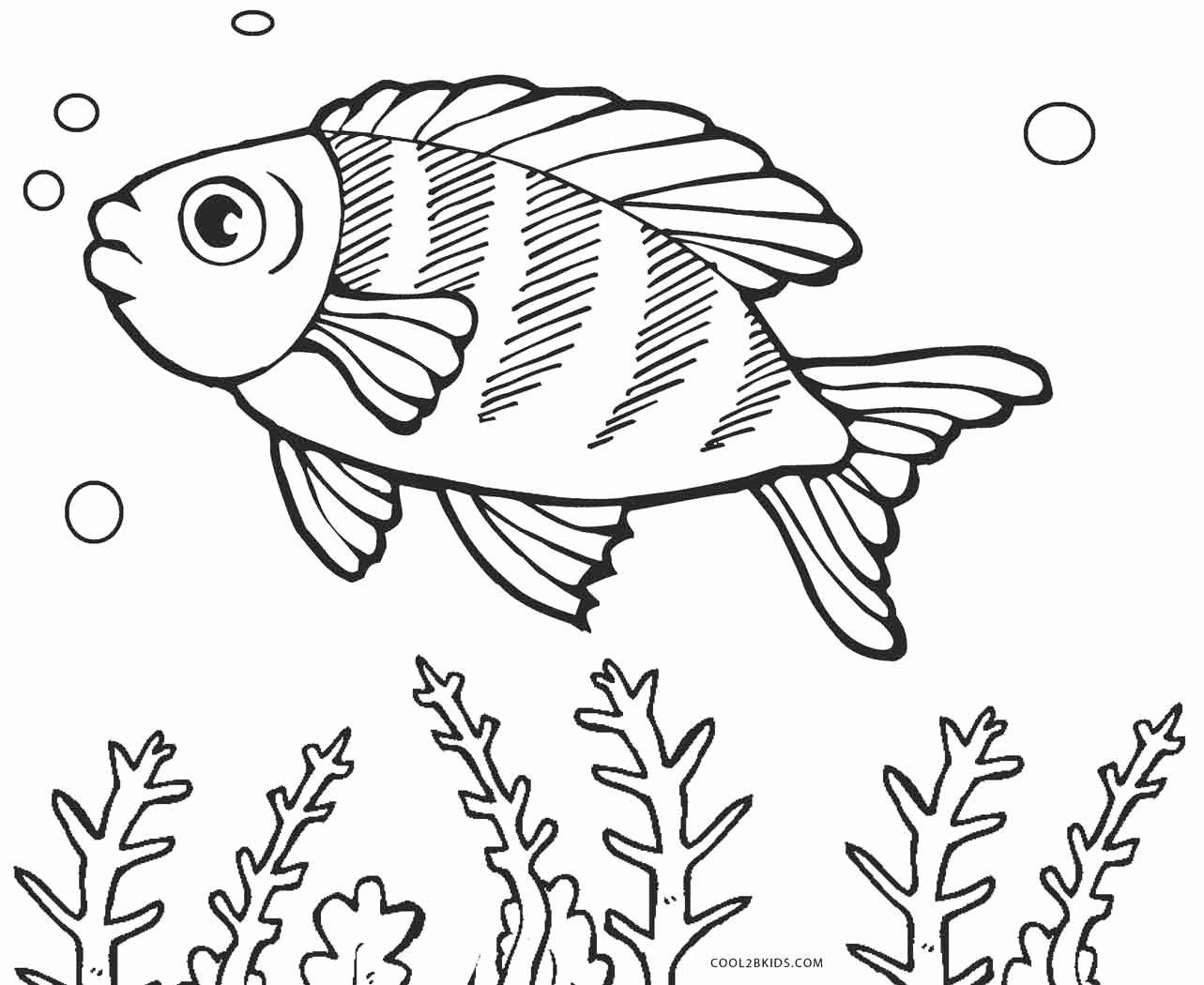 Printable Fish Colouring Pages Awesome Free Printable Fish Coloring Pages for Kids