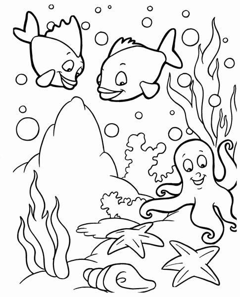 Printable Fish Colouring Pages Fresh Fish Coloring Pages