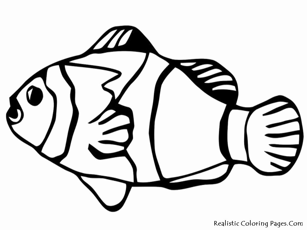Printable Fish Colouring Pages Lovely Nemo Fish Coloring Pages