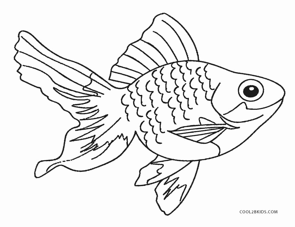 Printable Fish Colouring Pages Luxury Free Printable Fish Coloring Pages for Kids
