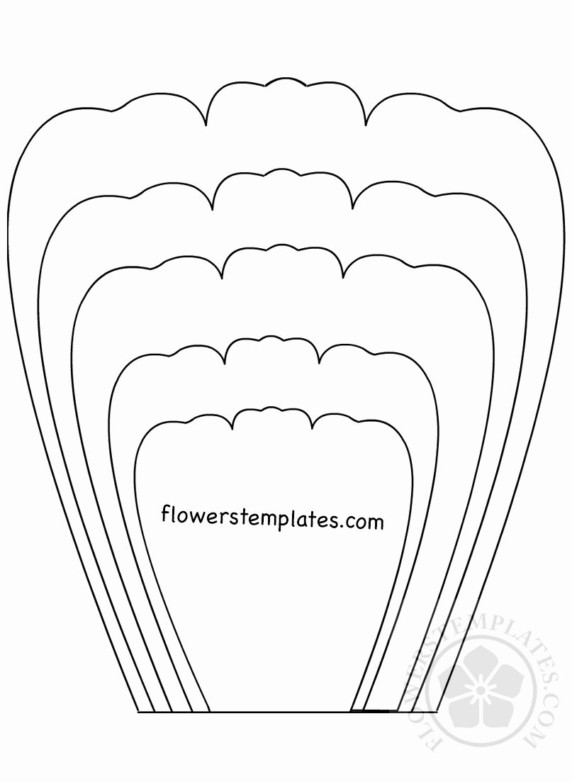 Printable Flower Petal Template Pattern Inspirational Rose Petal Template Printable