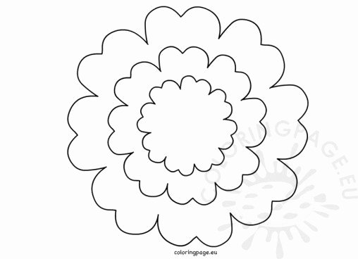Printable Flower Petal Template Pattern Lovely Flowers Coloring Page