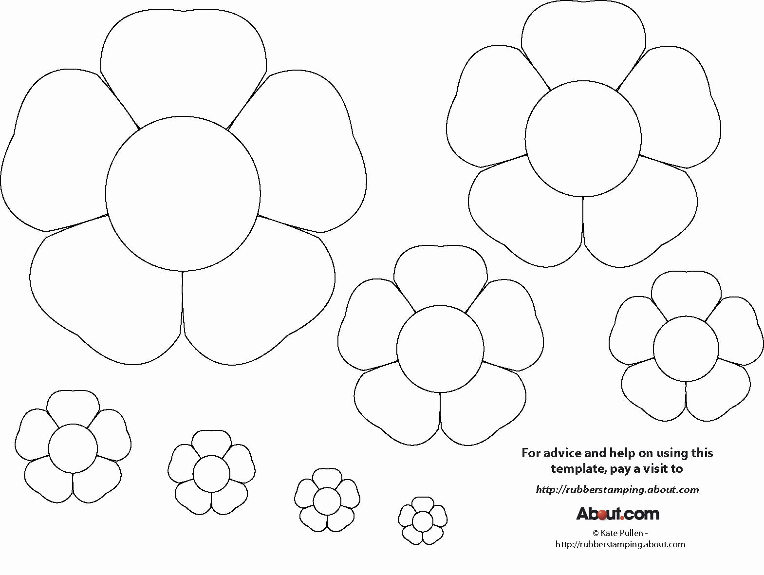 Printable Flower Template Cut Out Unique Babyz Flowers Different Flowers Patterns