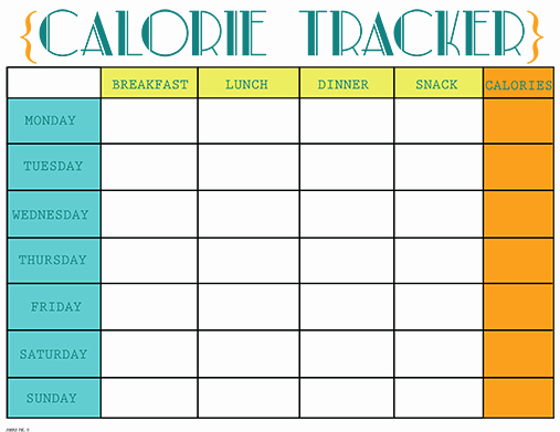 Printable Food Calorie Chart Best Of Printable Calorie Tracker Chart