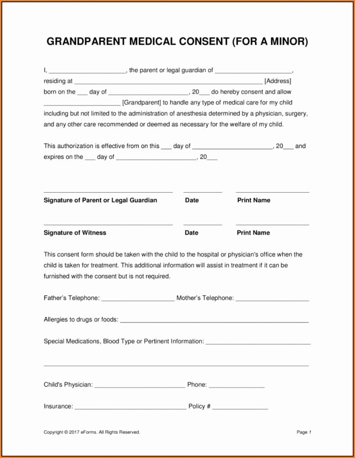 Printable Medical Consent forms Elegant Free Child Medical Consent form Template form Resume