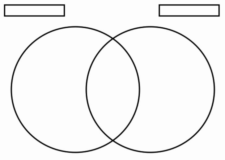 Printable Venn Diagram with Lines Lovely Printable Blank Venn Diagram Template Worksheet