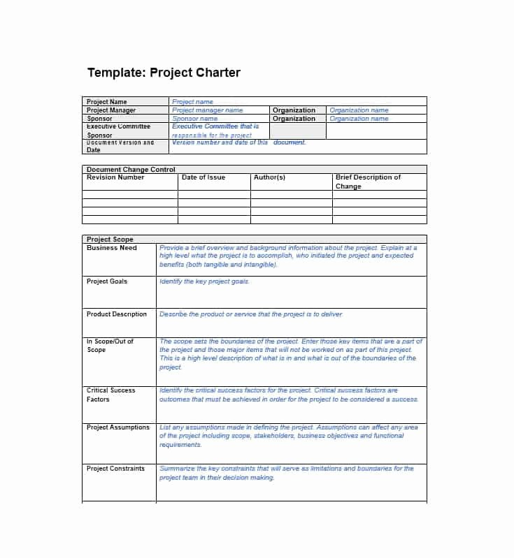 Project Charter Template Word Unique 40 Project Charter Templates & Samples [excel Word