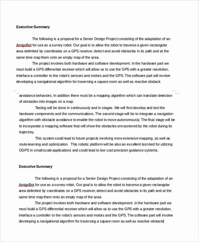Project Executive Summary Template Word Best Of Executive Summary Template