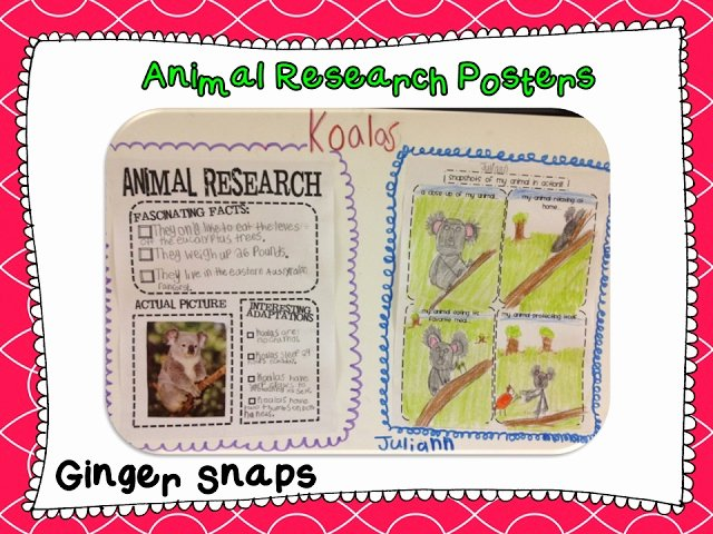 Research Project Poster Template New Ginger Snaps Animal Research Project Poster