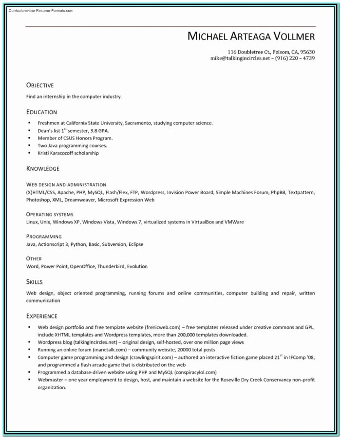 Resume Template Microsoft Word 2003 Inspirational Best Resume Example Ideas