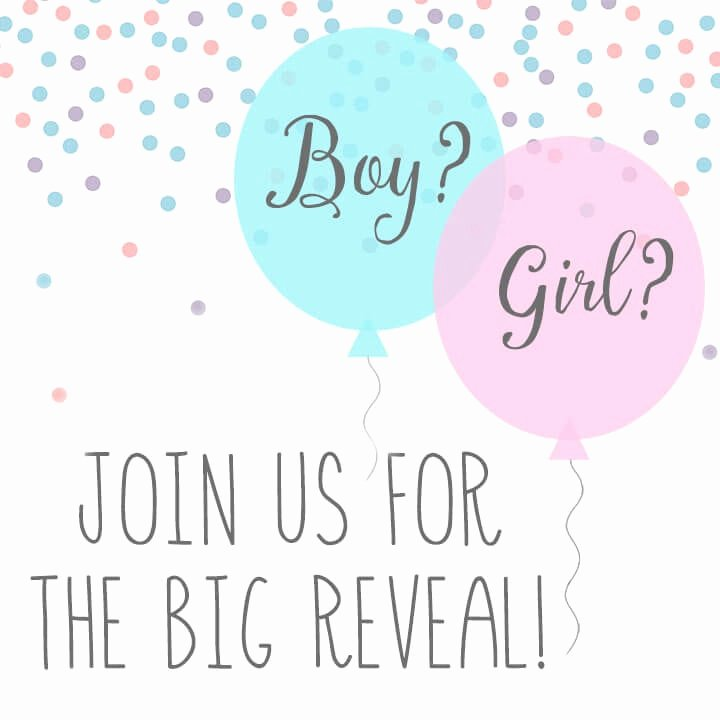 Reveal Party Invitation Ideas Unique Baby Gender Reveal Party Ideas Happiness is Homemade