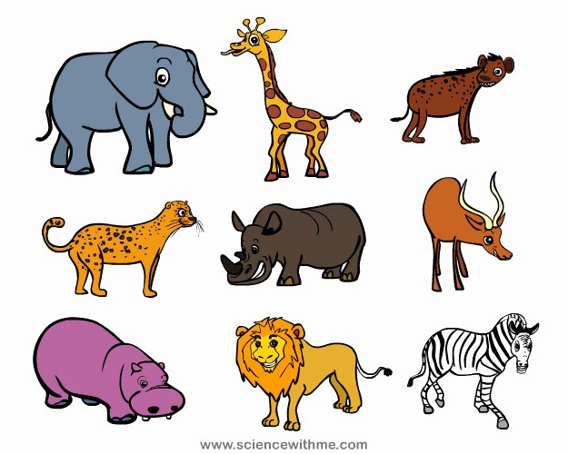 Safari Animal Cutouts Free Lovely Free Safari Animals Download Free Clip Art Free Clip Art
