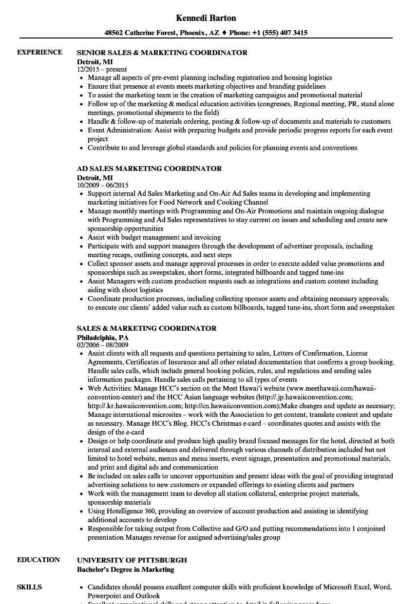 Sales and Marketing Coordinator Lovely Sales Marketing Coordinator Resume Samples