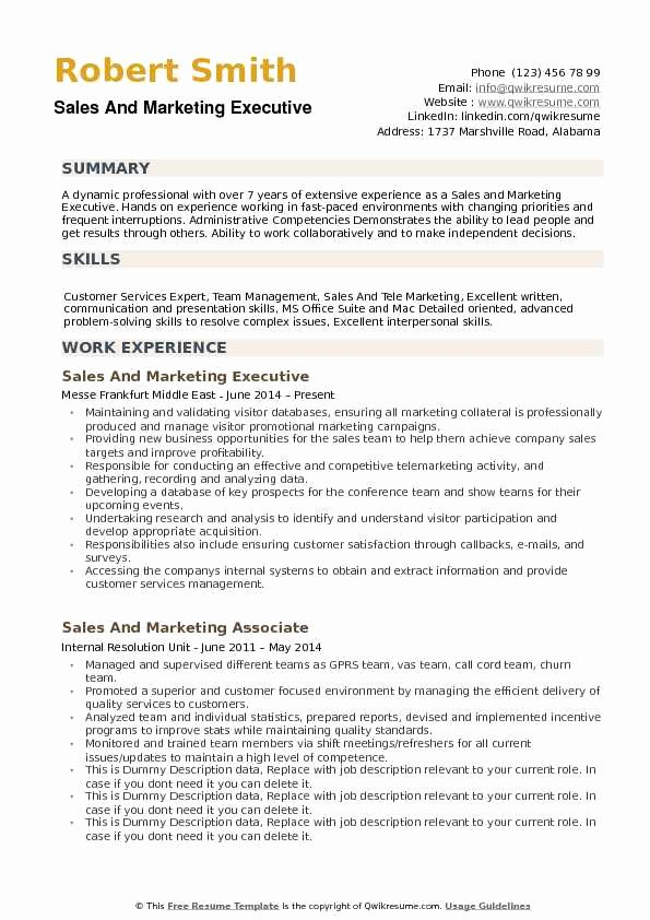 Sales and Marketing Resume Samples New Sales and Marketing Executive Resume Samples