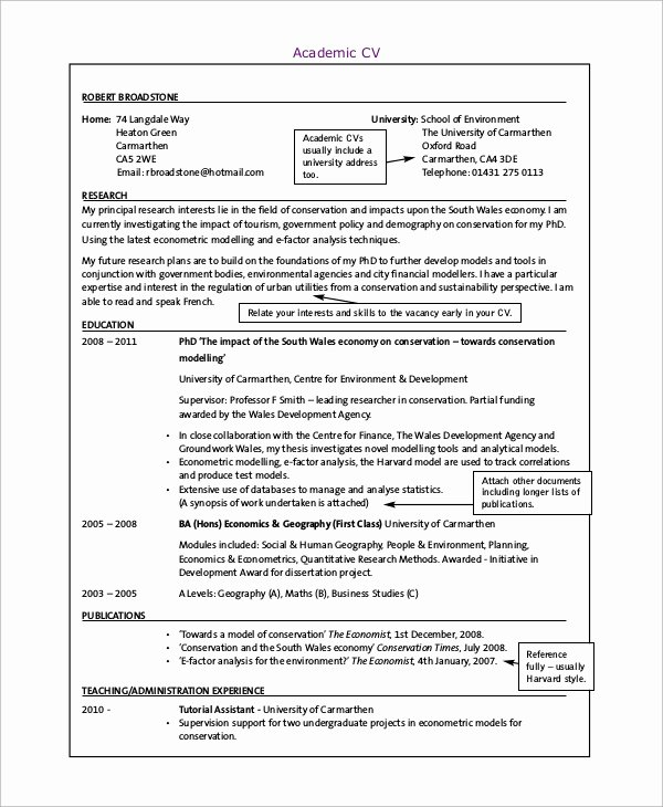 Sample Academic Curriculum Vitae Beautiful 9 Curriculum Vitae Examples Pdf Word