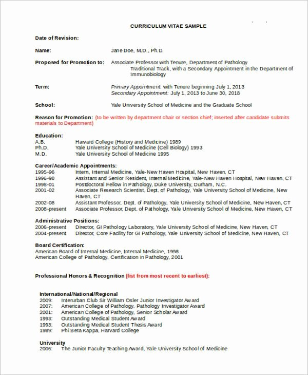 Sample Academic Curriculum Vitae New Cv Template Professor 1 Cv Template