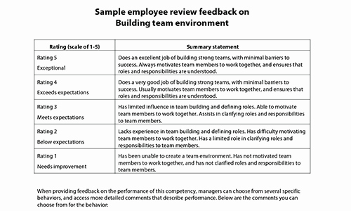 Sample Annual Performance Review Lovely Sample Performance Review Ments & Appraisal Feedback