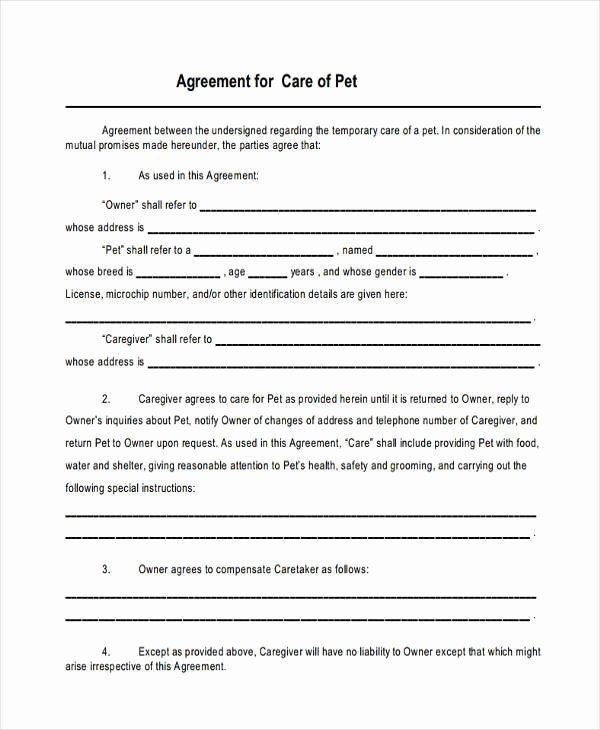Sample Child Visitation Agreement Inspirational 8 Custody Agreement form Samples Free Sample Example