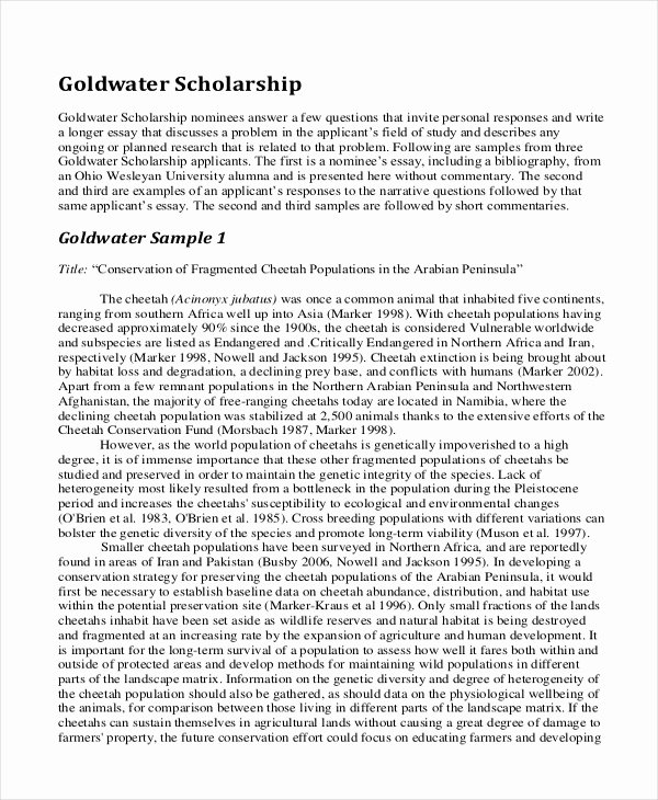 Sample Essay for Scholarship Awesome 9 Scholarship Essay Examples