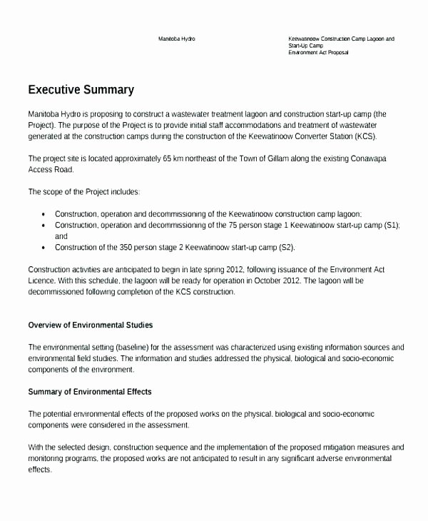 Sample Executive Summary Proposal Best Of Executive Summary Template Ppt Free