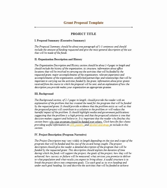 Sample Executive Summary Proposal Luxury Image Result for Non Profit Executive Summary Example
